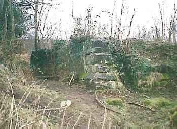 Baginton Castle