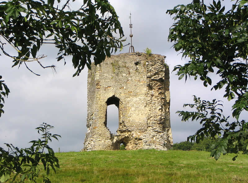 Old Knepp Castle Picture 1 West Grinstead Sussex England